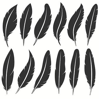 Kolekcja ikona pióro ptak, symbol pisania. upadłe puszyste pióra na białym tle. zestaw egzotycznych miękkich piór. ilustracja wektorowa