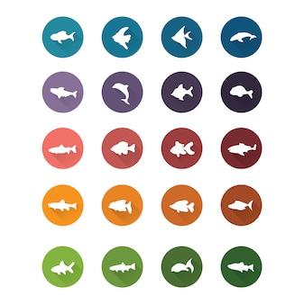 Kolekcja ikony ryby