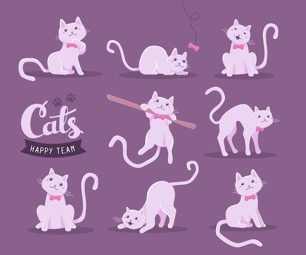Kolekcja ilustracji cute kota w różnych pozach