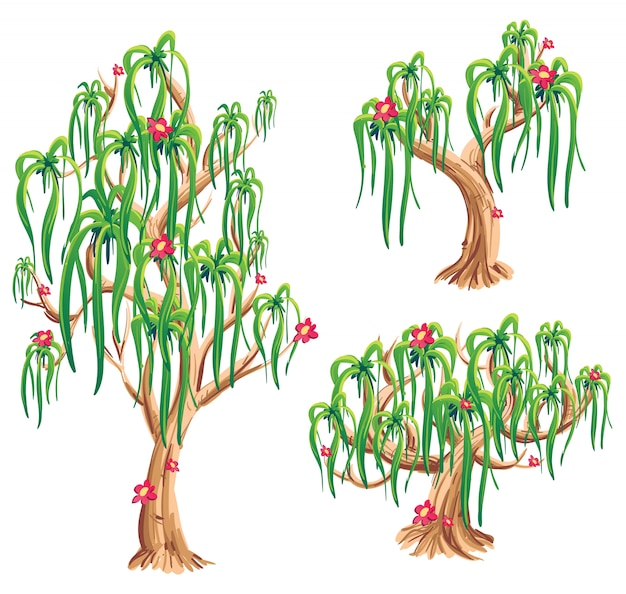 Kolekcja ilustracji drzewa