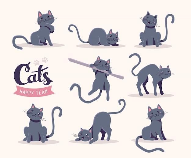 Kolekcja ilustracji ładny szary kot w różnych pozach