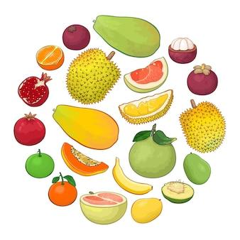 Kolekcja ilustracji owoców tropikalnych