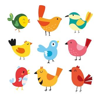 Kolekcja ilustracji ptactwa
