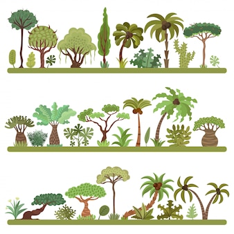 Kolekcja ilustracji tropikalnych drzew, palm i innych egzotycznych roślin tropikalnych.