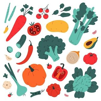 Kolekcja ilustracji warzyw