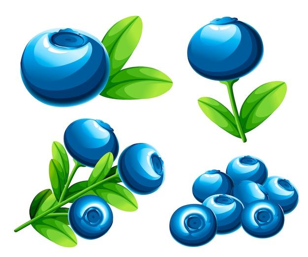Kolekcja jagód jagodowych. ilustracja borówki z zielonymi liśćmi. ilustracja na ozdobny plakat, emblemat produkt naturalny, rynek rolników. strona internetowa i aplikacja mobilna.