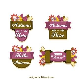 Kolekcja jesień etykieta z liści