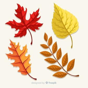 Kolekcja jesień liście płaski kształt
