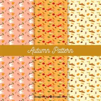 Kolekcja jesień wzory z elementami wektor swobodny