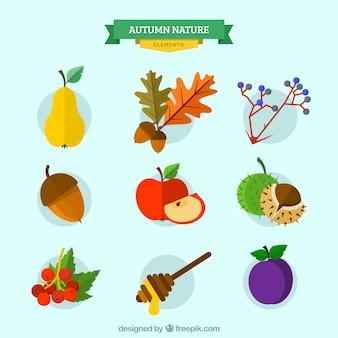 Kolekcja jesiennych charakter