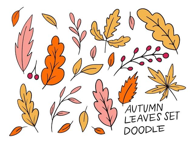 Kolekcja jesiennych liści doodle