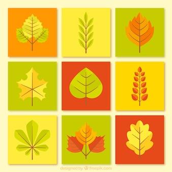Kolekcja jesiennych liści w płaskiej konstrukcji