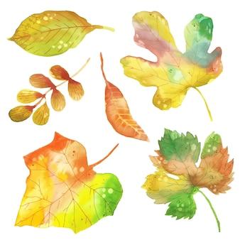 Kolekcja jesiennych liści w stylu przypominającym akwarele