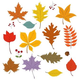 Kolekcja jesiennych liści z kreskówek