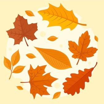 Kolekcja jesiennych liści