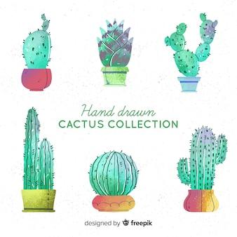 Kolekcja kaktusów akwarela