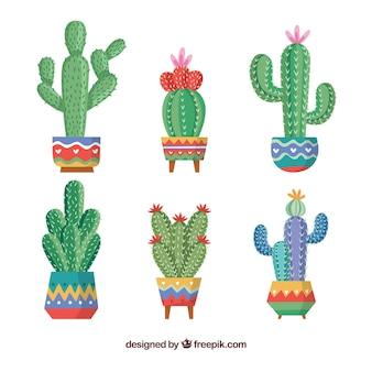 Kolekcja kaktusów kreatywnych