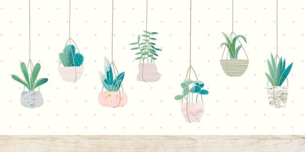 Kolekcja kaktusów wiszących botaniki