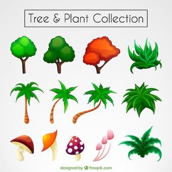 Kolekcja kolorowych drzew i roślin