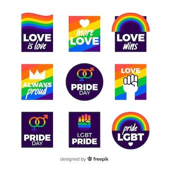 Kolekcja kolorowych etykiet dnia dumy
