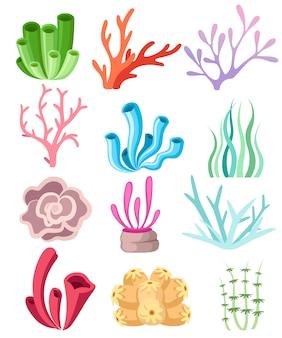 Kolekcja kolorowych korali i wodorostów. kwiatowy głębinowy. flora i fauna oceanów. ilustracja na białym tle