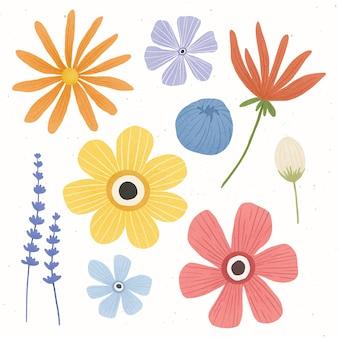 Kolekcja kolorowych kwiatów