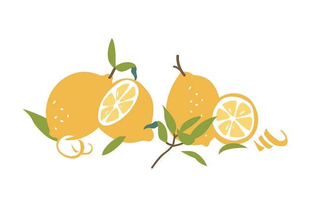 Kolekcja kolorowych letnich owoców cytrusowych