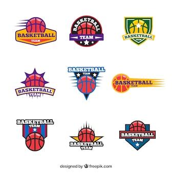Kolekcja kolorowych logo koszykówki