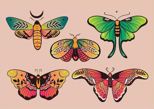 Kolekcja kolorowych motyli fantasy do projektowania. grafika wektorowa.