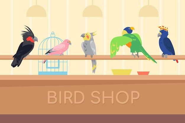 Kolekcja kolorowych papug w sklepie dla ptaków. dzikie tropikalne ptaki egzotyczne dla domu ilustracja kreskówka