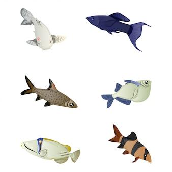Kolekcja kolorowych ryb