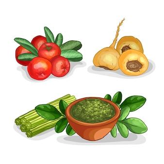 Kolekcja koncepcji superfood