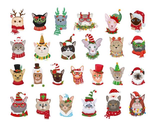 Kolekcja kotów rasowych w strojach sylwestrowych