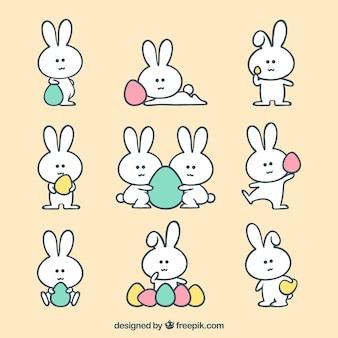 Kolekcja króliczek wielkanocny z jaj