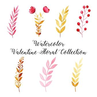 Kolekcja kwiatów akwarela valentine
