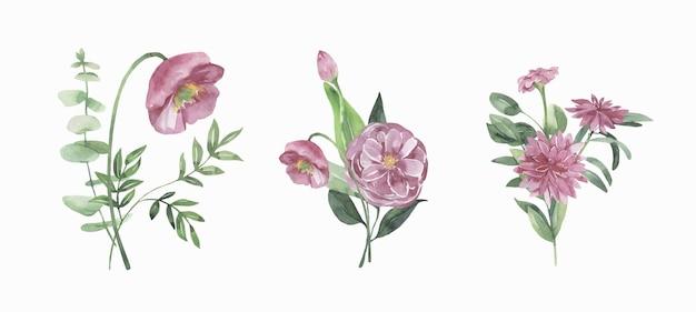 Kolekcja kwiatów akwarela.