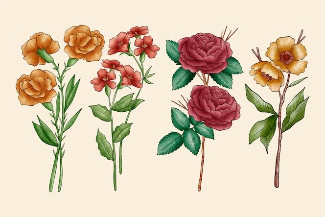 Kolekcja kwiatów botaniki vintage