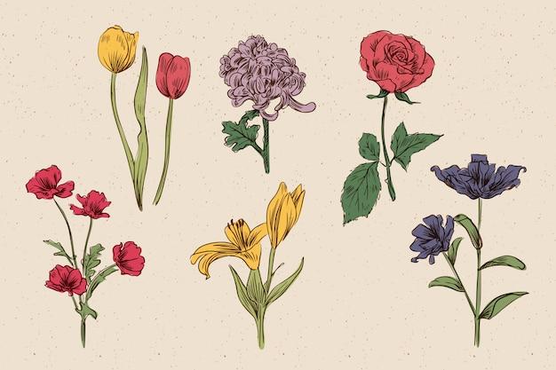 Kolekcja kwiatów w stylu vintage botanika