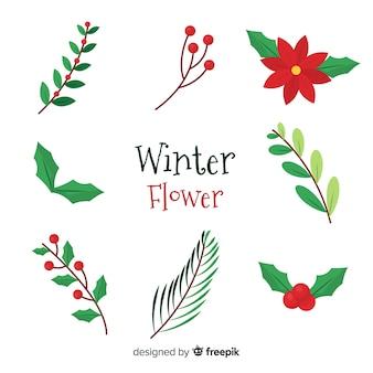 Kolekcja kwiatów zimowych