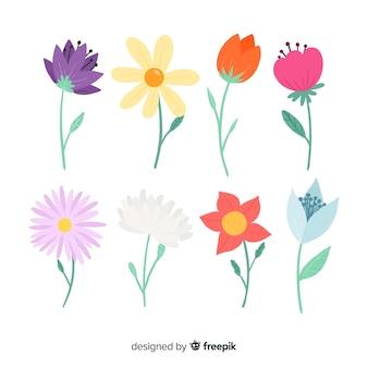 Kolekcja kwiatów