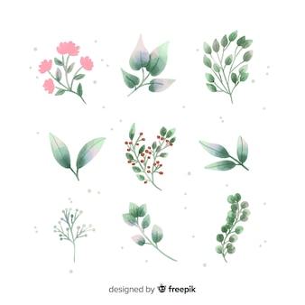 Kolekcja kwiatowych gałęzi wykonana akwarelami