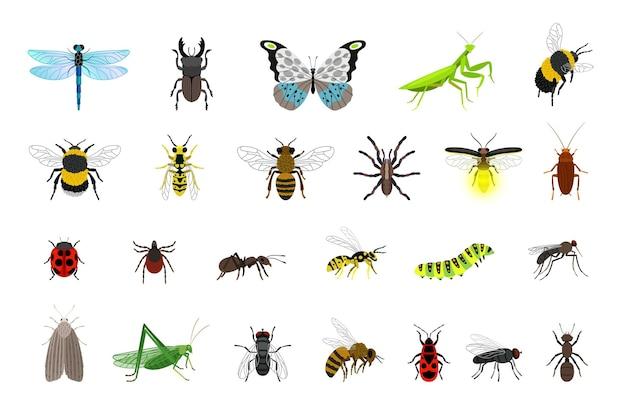 Kolekcja ładnych owadów. kreskówka małe kolorowe chrząszcze i gąsienice, błędy i motyl, ilustracji wektorowych stworzeń entomologii nauki na białym tle