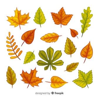 Kolekcja liści jesienią płaski kształt