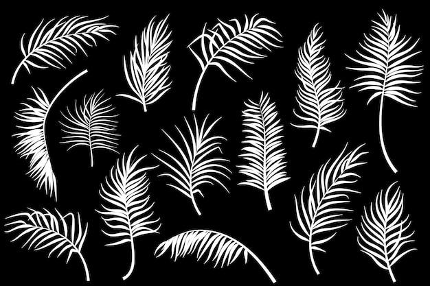 Kolekcja liści palmowych na białym tle. ilustracji wektorowych