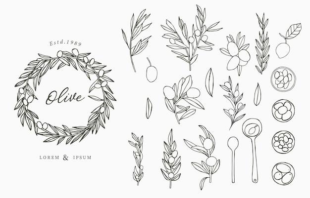Kolekcja logo black olive z liśćmi.