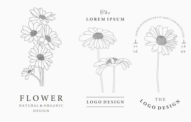 Kolekcja logo czarnego kwiatu z stokrotkami, liśćmi, geometrycznymi