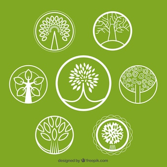 Kolekcja logo drzewo