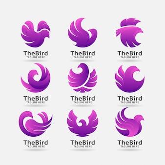 Kolekcja logo fioletowy ptak
