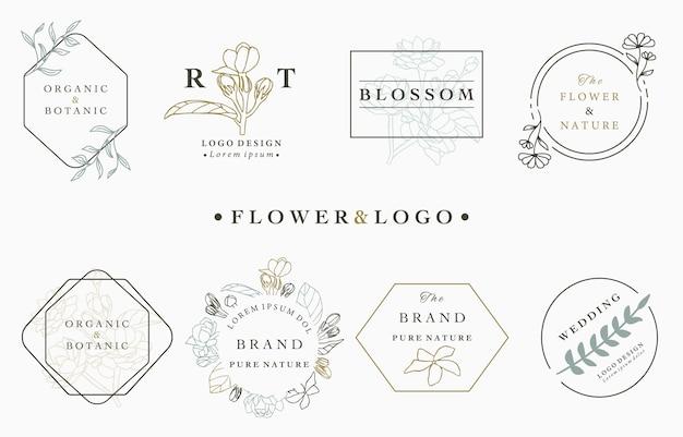 Kolekcja logo kwiat z liśćmi, geometryczne, koło, kwadratowa ramka.