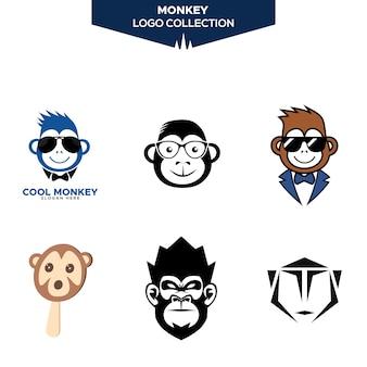 Kolekcja logo małpa